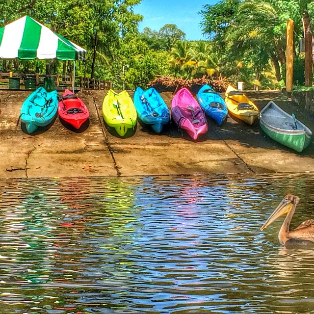 Visit Puerto Barillas.  Activities include:  Kayaking, cacao tour, fishing, boat tour ride, rodeo capture tour (turtle conservation Programs), visit monkey sanctuary  Our facilities include:  Lodging, marina, restaurant, swimming Pool, social area.  www.puertobarillas.con.  #funday #activities #sunny #adventure #sports #visitelsalvador #ESTM2014 #bahiadejiquilisco #relaxing