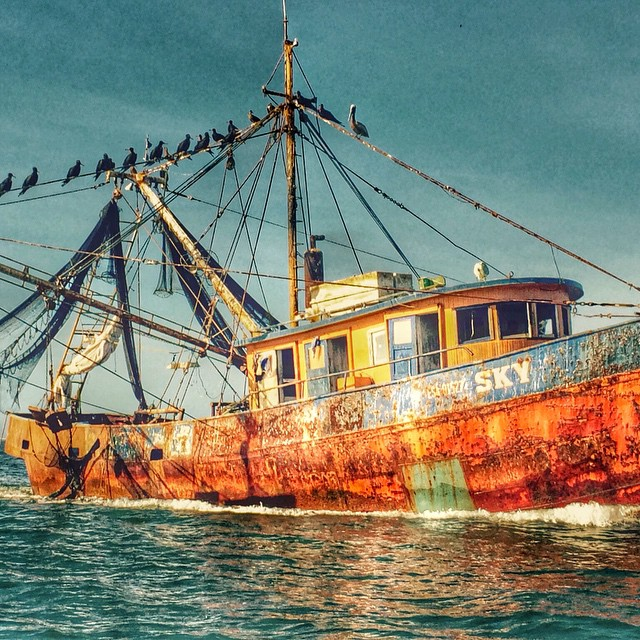 Last weekend I visited Puerto Barillas and Took a boat tour at 5 am and saw This boat !  Mira lo que vi el fin de semana pasado en mi tour en lancha desde @puertobarillas_elsalvador ! #birdwatching #boatride #boat #sailing #sightseeing #elsalvador #fun #sunnny #bestoftheday