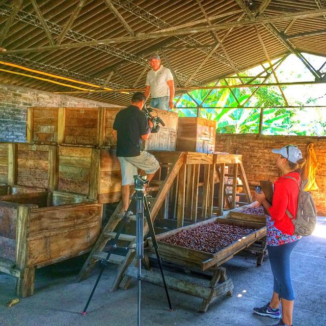 Fermentation process - Cocoa tour #cocoa #tour #elsalvador #travel #agritourism