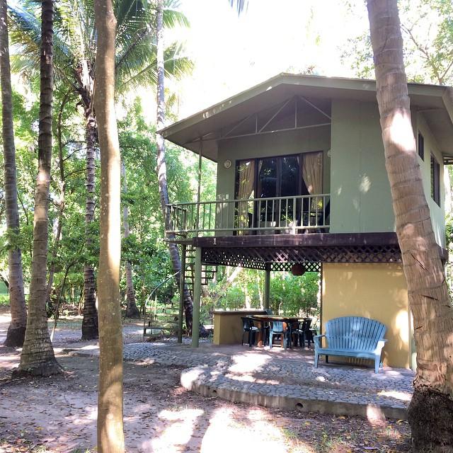 Tenemos 2 casas de árbol disponibles este fin de semana y 1 apartamento.  Llámanos al 26751131 para hacer reservaciones  Feliz día!!!