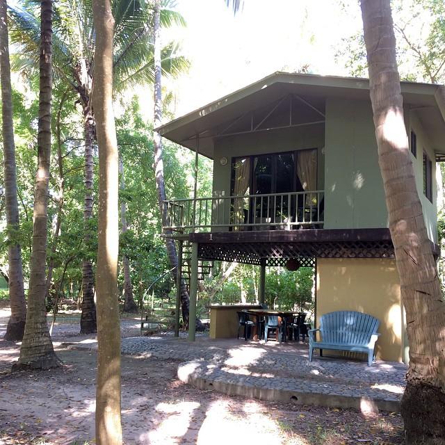 Para este fin de semana tenemos disponibles 1 casa de árbol y 2 apartamentos. Para reservas; 2675-1131..