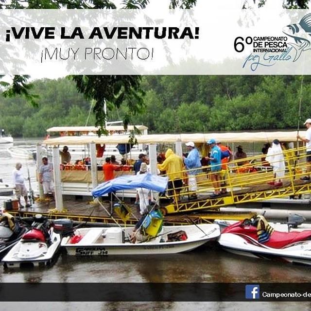 Tu inscripción incluye transporte de Puerto Barillas a una de las islas mas paradisíacas del país. Próximamente más detalles...