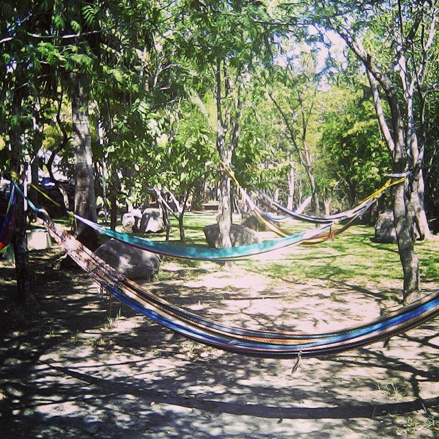 Waiting for the weekend, waiting for a hammock -#relax #nature #hammock #paradise #beautiful #views #peaceful