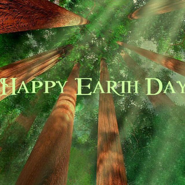 Este Mes empezamos a cultivar un huerto. Happy Earth Day!  Let's Save the planet #earth #day #nature #fauna #conservation #lovemyplanet