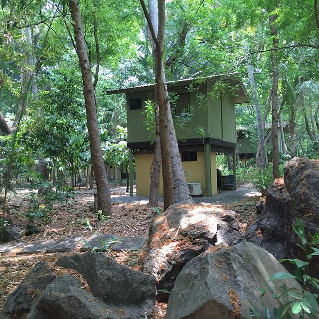 Ya casi es fin de semana.  Animate a visitarnos ..Contamos con 3 Casas de Arbol y 2 apartamentos para este fin de semana.  Reserva en Linea y encontraras una Promoción del dia de la madre. #lodge #hotel #nature #ecotourism #actividades #relaxation #paz #armonia