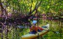 Kayaking in Jiquilisco Bay